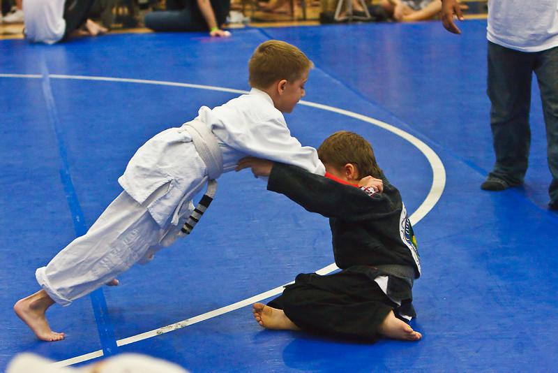 MMA_Houston_20090418_0226.jpg