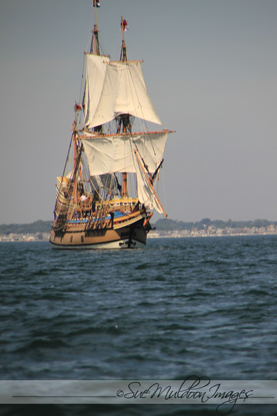 Mayflower 2020 New London -181.jpg