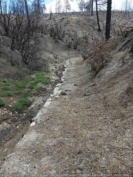 20100509079-Trail Recon, Vetter Mountain Trail.JPG