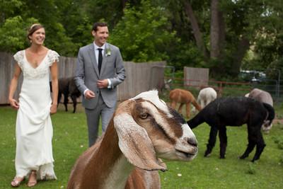 Amanda + Devon's Wedding
