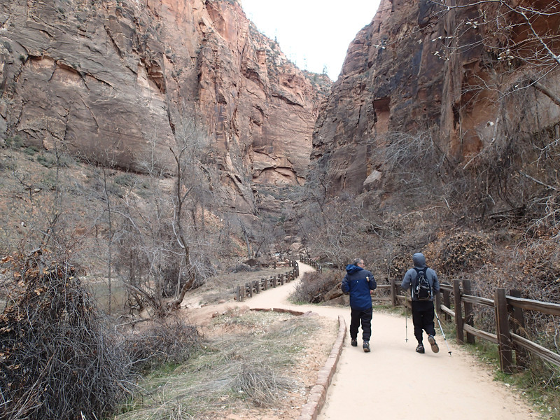 Zion National Park - Ashley 41.JPG