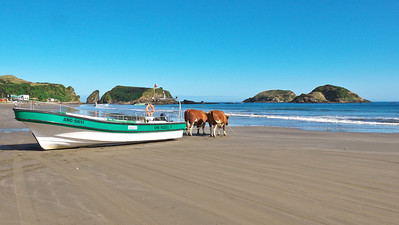 Chilean Lake District and Chiloe