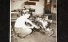 Radio Station employee August 1952