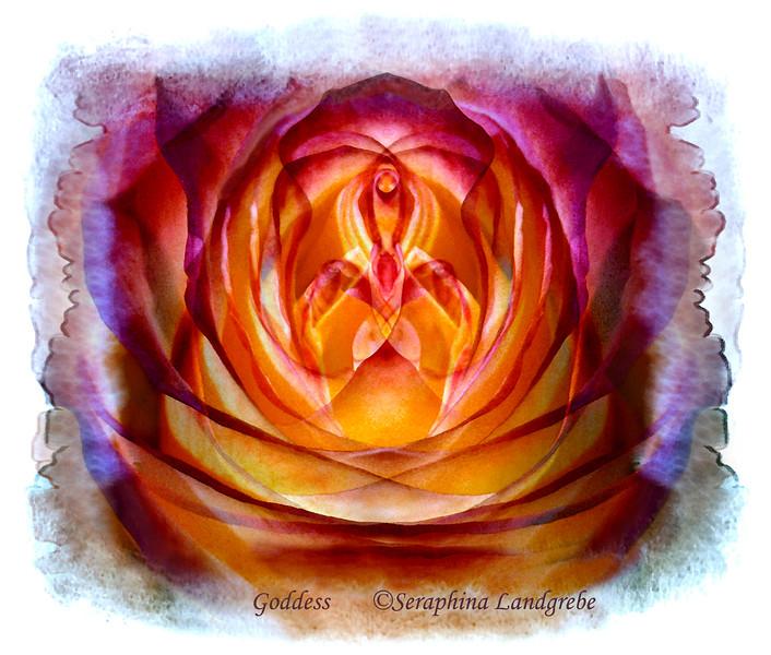 Goddess rose12X18.jpg