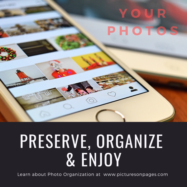 Preserve, Organize and Enjoy #5.png