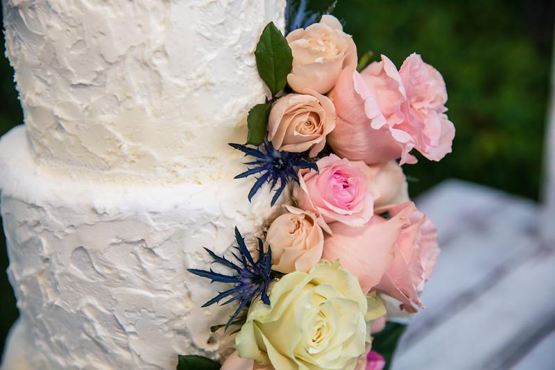 Wright  - Marchant Wedding 2019