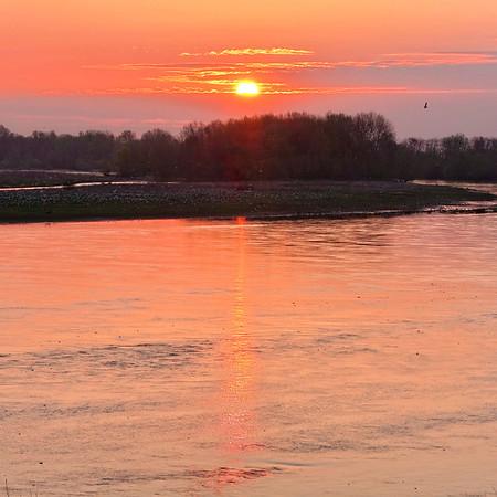 Lever de soleil Sandillon - avril