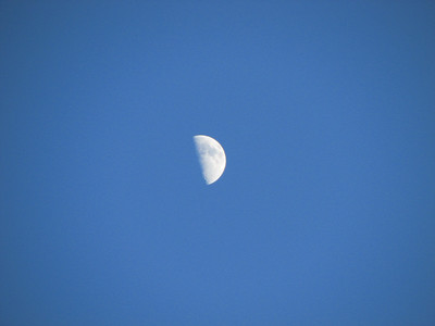 Moon Daytime 20071217
