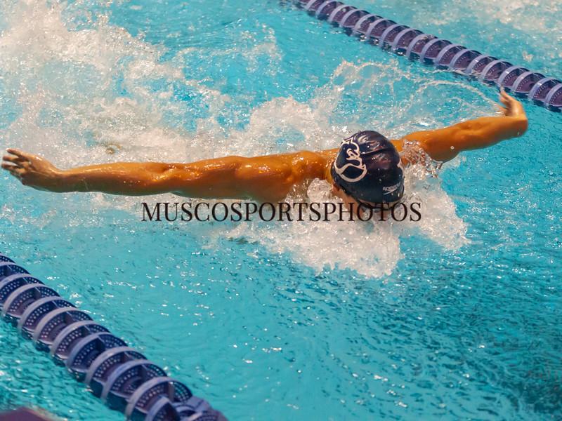 Swimming-diving vs Seton Hall_351.jpg