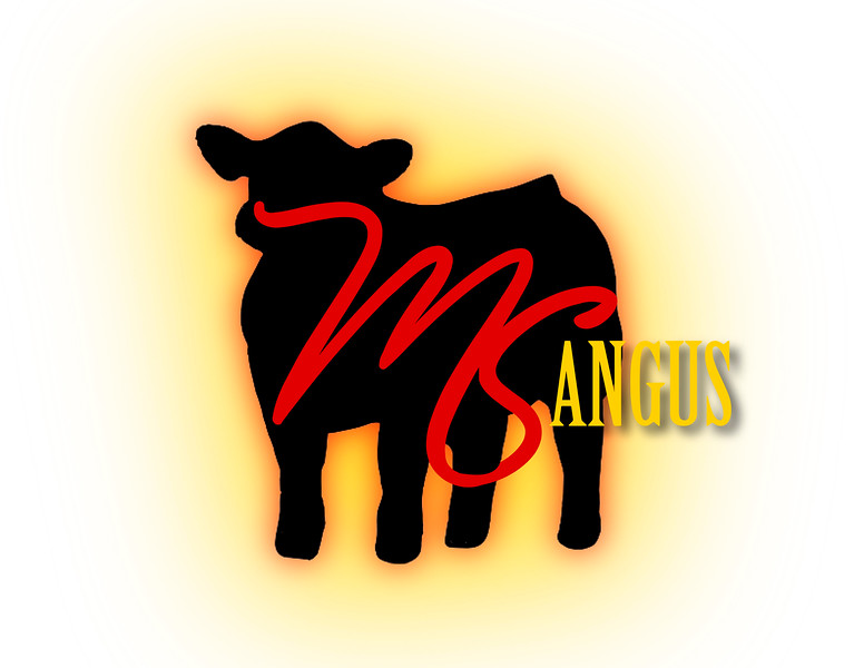MS ANGUS