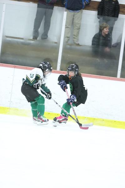 2012-2013 WHS Youth Hockey