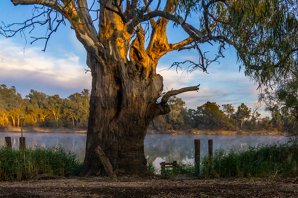 The Murray at Mildura ~ May