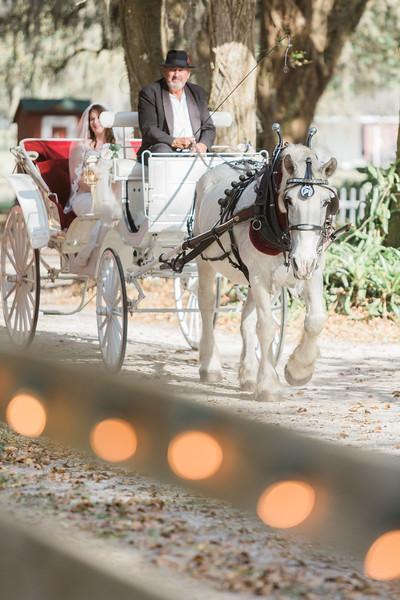 ELP0312 DeRoxtro Oak-K Farm Lakeland wedding-995.jpg