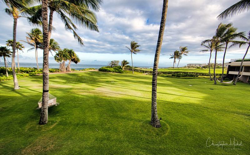 kauai3_20120715_3353.jpg