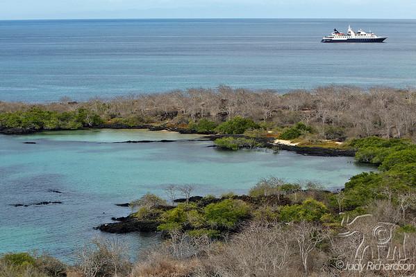 Galapagos Scenery~November 2008
