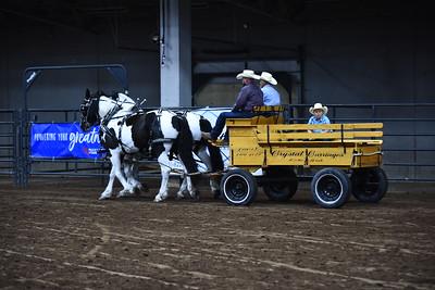 Farm Team on the rail
