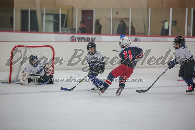 Blizzard Hockey 111719 7946.jpg