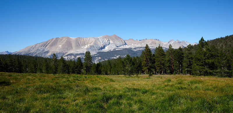 Meadows near Wallace Creek