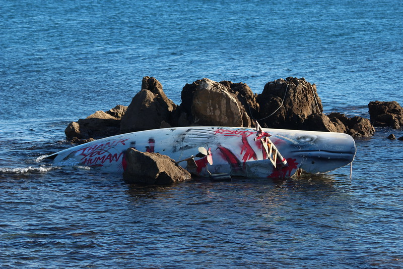 Whale protest, located in rocks in Antibes, France