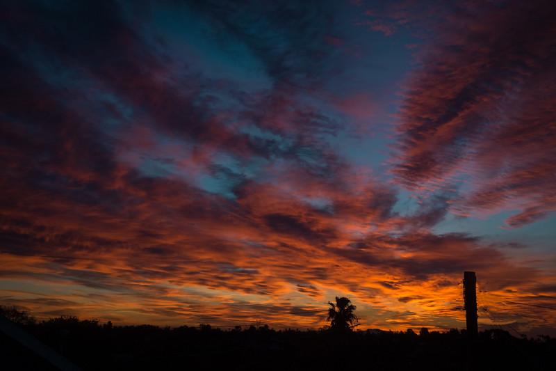 January 11 - Sunrise in Los Angeles-1.jpg