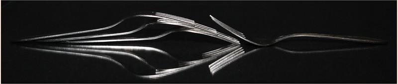 A Forks Life.jpg