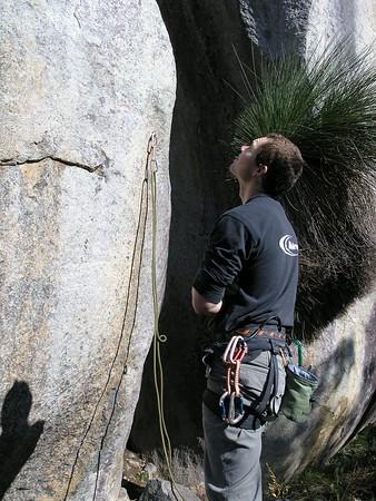 Llama Rocks