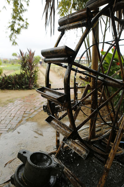 The Water Wheel - Organic Farm & Cooking Classes