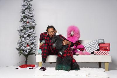Dog Model Christmas