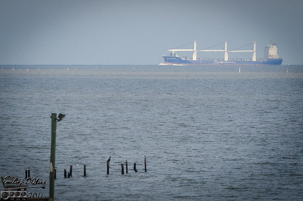 Galveston Bay Ships