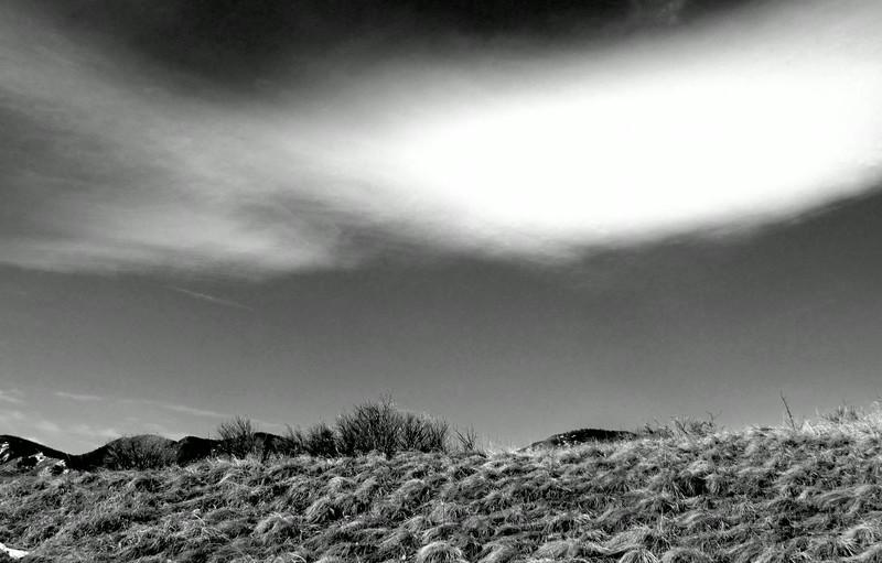 Local Hikes (971).JPG