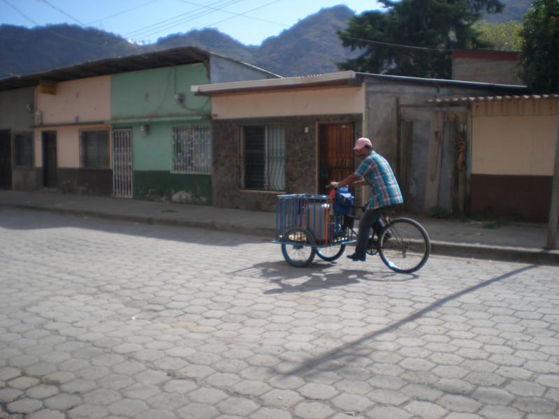 Local vendor with shop