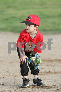 Muckdogs T-Ball