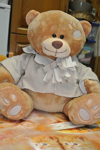 Bear 'Pullo' 01.JPG