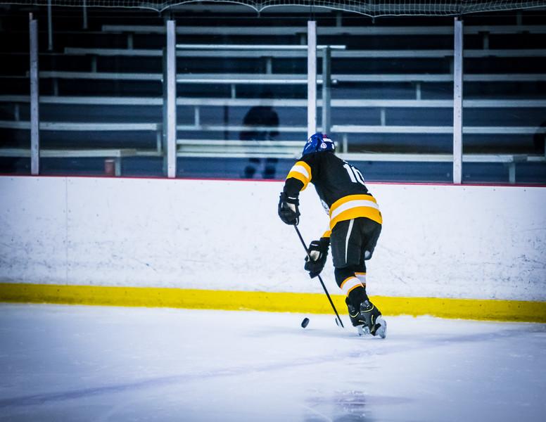Bruins2-80.jpg