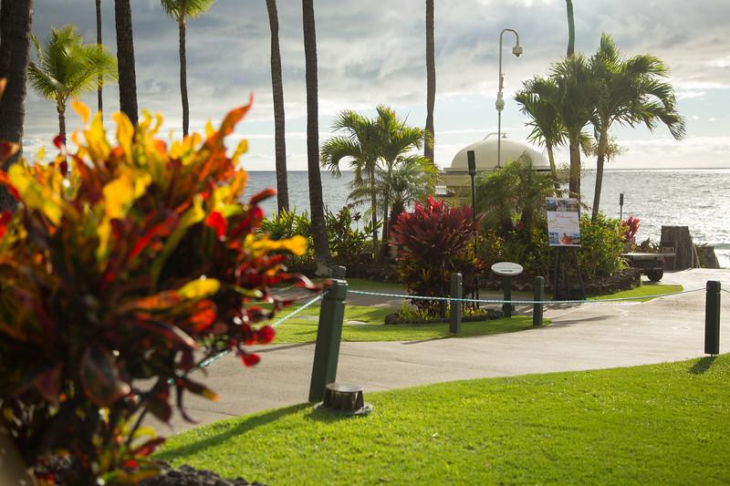 Maui-Caterina-CAM1-1st-123.jpg