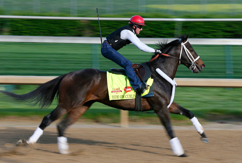 . Kentucky Derby contender Ride On Curlin works out on the track during early morning workouts at Churchill Downs on May 1, 2014 in Louisville, Kentucky.  (Photo by Kevin C. Cox/Getty Images)