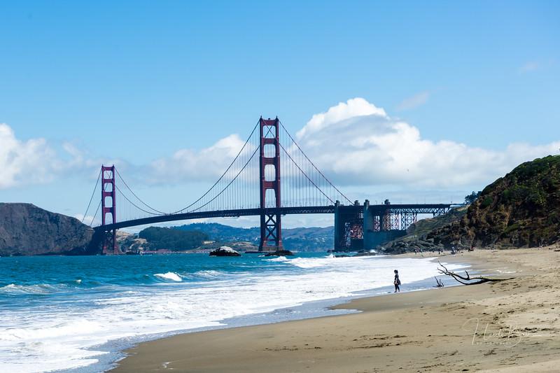 Bay Area Landscapes-3.jpg