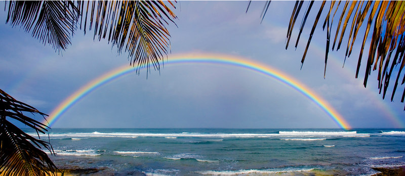 Rainbow over Backyard.jpg