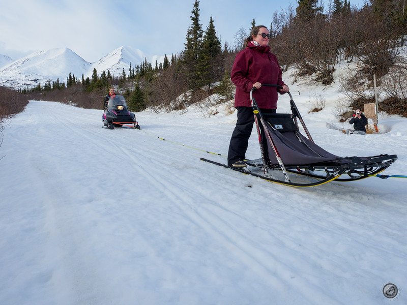 20190325_Blaire_and_Liz_Mushing_86.jpg