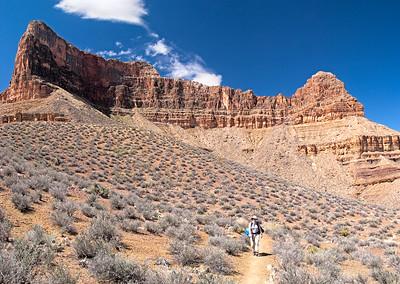 Grand Canyon/Colorado River