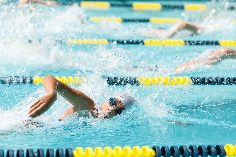 2015.08.22 FHCC Swim Finals 0388.jpg