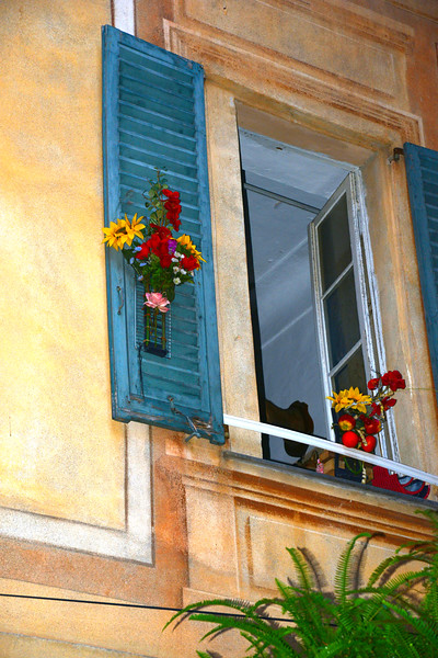 Flowers on Shutter.JPG