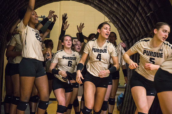 Purdue Volleyball vs Michigan St 2015-11-25
