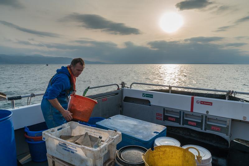lobster-safari-wales-5.jpg