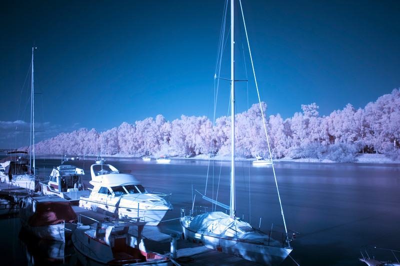 Boats and yachts moored in Gelves Marina, Seville, Spain. Infrared image, red and blue channels were changed in the edition process.