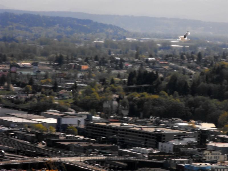 Tacoma 094a (1600 x 1200).jpg