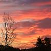 PF-170911-0001<br /> Sunrise Sky