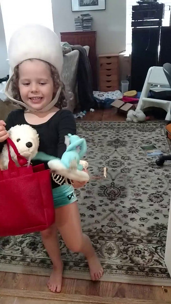The bag is filled with pretend cookies.