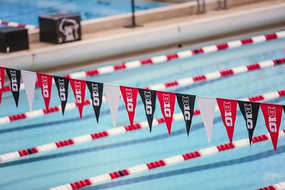State Swim Meet