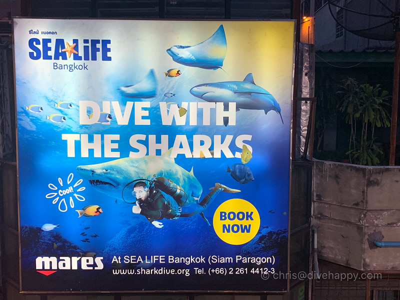 dive-with-the-sharks-closeup-bangkok-vee-shops.jpg